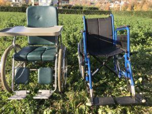 Sedie per disabili